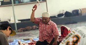 Pemotongan hewan kurban di DPW PKS Lampng, Sabtu (26/9)