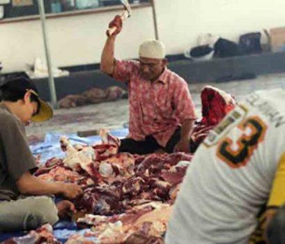 Partai PKS Lampung Kurban 284 Ekor Sapi ,  516 Kambing dan 1 Kerbau