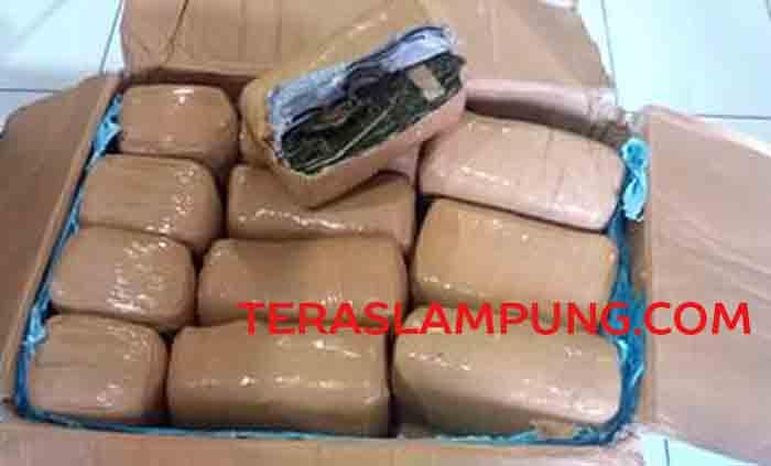 Barang bukti 90 kg ganja dari Aceh kini disita Polsek Tanjungkarang Timur.