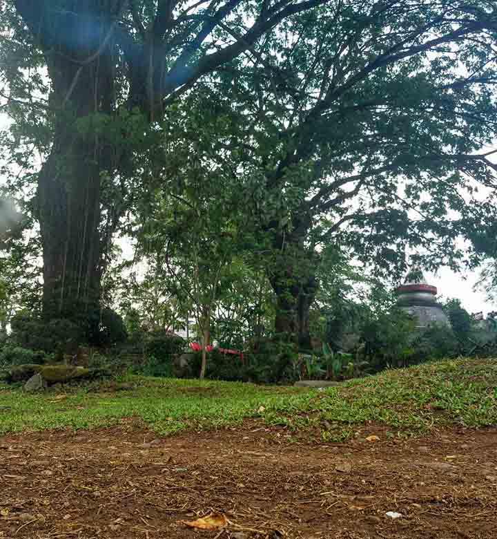 Lampu suar yang diabadikan di bagian atas tugu tampak berada di gengah rerimbunan pohon di Taman Dipangga. Beberapa (Foto: Daniel H. Ghanie)