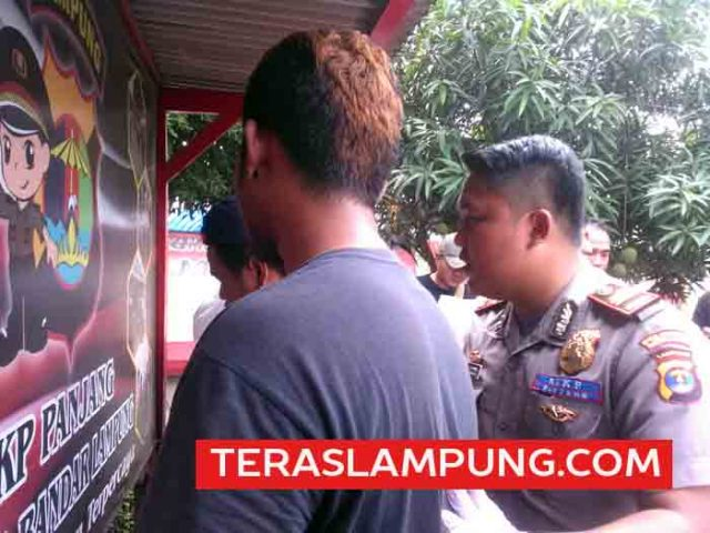 pengiriman daging celeng ke Jakarta via Lampung