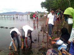 Relawan Sobat Mustafa menanam pohon mangrove di pesisir Pantai Padangcermin, Kabupaten Pesawaran, Selasa (4/4/2017).
