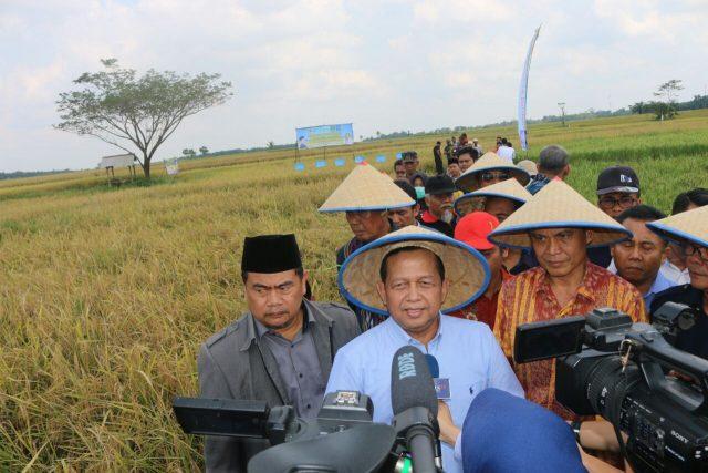 Soetrisno Bachir pada acara Panen Raya Padi Organik, di Desa Rengas, Kecamatan Bekri, Kabupaten Lampung Tengah, Selasa (1/5/2018).