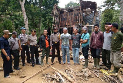 Dua Warga Tanggamus Tewas Diserang Gajah, Ini Penjelasan Dinas Kehutanan