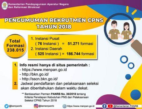 Pendaftaran September, Pemerintah Buka Lowongan 238 Ribu Formasi CPNS