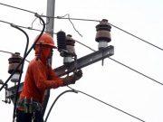 Petugas PLN melakukan perawatan rutin jaringan di Jalan Sukahati Kabupaten Mesuji