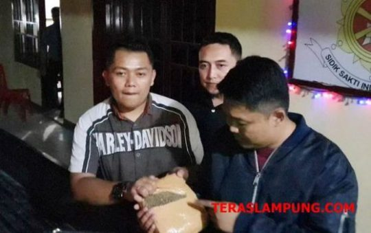 Kasat Reserse Narkoba Polres Lampung Selatan, Iptu Ferdiansyah bersama tim dari BNN pusat dan BNNP Lampung saat menunjukkan barang bukti ganja asal Aceh yang disita dari dua pelaku kurir Syarif dan Aris.
