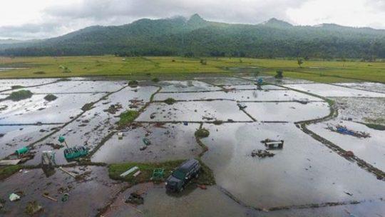 Potensi Tsunami 20 Meter di Pantai Selatan Jawa, Ini Kata BMKG