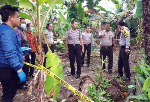 Tubuh Penuh Luka Bakar, Mayat Warga Pekon Podomoro Ditemukan di Belakang Rumah