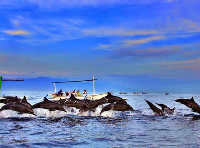 Pantai Lovina dengan ratusan lumba-lumba yang siap menyambut wisatawan (Foto: idtempatwisata.com)