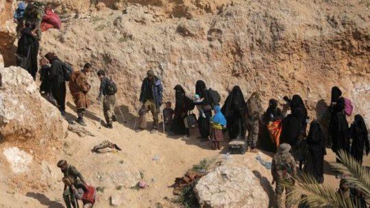 Kesaksian Eks PNS Pendukung ISIS yang Sempat Menetap di Suriah