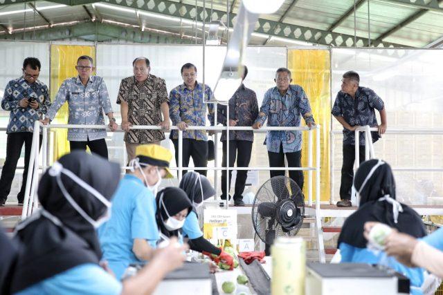 melakukan kunjungan kerja ke PT Great Giant Pineapple (GGP) Humas Jaya, Kabupaten Lampung Tengah, Jum'at (26/07/2019).