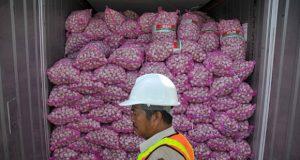 Seorang petugas memperlihatkan tumpukan bawang di dalam sebuah kontainer di kawasan Terminal Petikemas Surabaya (TPS), Tanjung Perak, Surabaya, Jawa Timur, Rabu, (20/3). Sebanyak 332 kontainer berisi bawang tertahan di Terminal Petikemas Surabaya (TPS) karena didatangkan sebelum Rekomendasi Impor Produk Hortikultura (RIPH) dikeluarkan oleh Kementrian Pertanian (Kementan). TEMPO/Aris Novia Hiday
