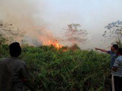 Warga melihat salah satu titik api kebakaran lahan di Desa Suak Pangkat, Kecamatan Bubon, Aceh Barat, Aceh, Rabu (31/7/2019). Petugas BPBD Aceh dibantu warga terus berusaha melakukan pemadaman kebakaran hutan dan lahan (Karhutla) yang terjadi di Kabupaten Aceh Barat agar tidak terus meluas. - Antara