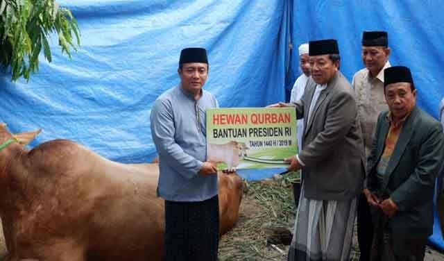 Gubernur Arinal Djunaidi menyerahkan sapi sumbangan dari Presiden Jokowi.