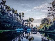 Kebun kopi Malabar, Pengalengan, Bandung menjadi tempat wisata (Hindrawan/TEMPO)
