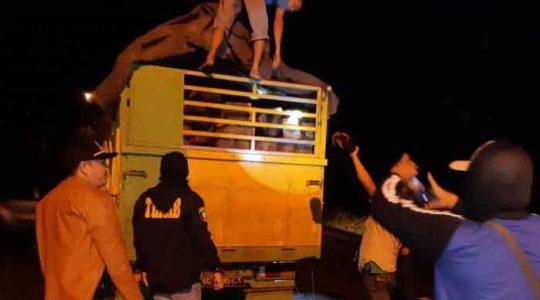 Bawa Satu Truk Kayu Ilegal dari Hutan Register 39, Dua Warga Sumsel Dibekuk Polisi