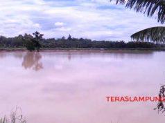 Empat hari setelah jebolnya jebolnya tanggul sungai Way Katibung di Desa Sinar Pasmah, Kecamatan Candipuro, Lampung Selatan, ratusan hektar lahan sawah masih terendam air setinggi 50 cm, Sabtu (11/1/2020).