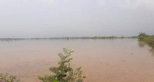 Ratusan hektar sawah di tiga desa di Kecamatan Candipuro terendam banjir akibat tanggul sungai Way Katibung yang berada di Desa Sinar Pasemah, Kecamatan Candipuro, Lampung Selatan jebol.