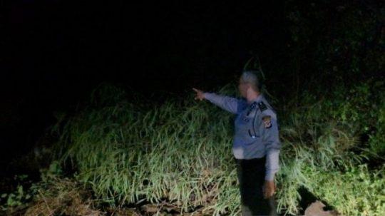 Tebing Longsor, Jalur Bandung-Cianjur Lumpuh Total