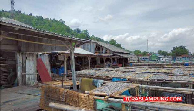 Tempat pengrajin ikan asin di Desa Sukajaya, Kecamatan Teluk Pandan, Kabupeten Pesawaran.