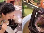 Tangkapan layar video seoarang wanita di China menyantap sup kelelawar. Sumber: Daily Mail
