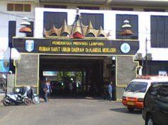 Rumah Sakit Umum Abdul Moeloek/Ilustrasi. Foto: dok sigerindo