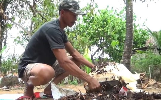 Sukamto membersihkan kulit bonggol pisang kepok hingga diperoleh bagian dalam bonggol berwarna putih yang akan diolah menjadi makanan ringan (cemilan) keripik.