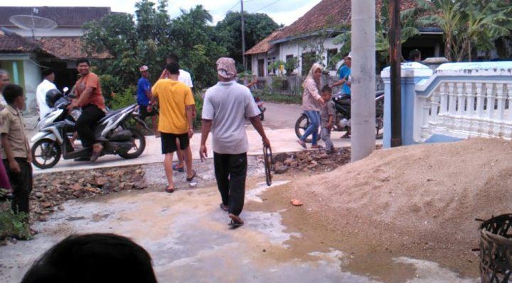 Ular berbisa dan mematikan (kobra), dibawa ke luar oleh Kateni, seorang pemuda warga Desa Sidorejo