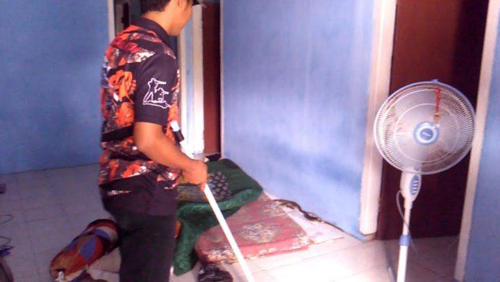 Ular kobra yang masuk ke rumah Ibu Salwanis (54) di Jalan Karyawan Dusun Ringin Agung II Desa Sidodadi, Kecamatan Sidomulyo, Lamsel, Sabtu (1/2/2020) siang.