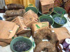 Barang bukti bahan material bangunan yang disita petugas Satreskrim Polresta Bandarlampung dari pelaku Miyanto dan Agunawan. (Foto: Humas Polresta Bandarlampung).
