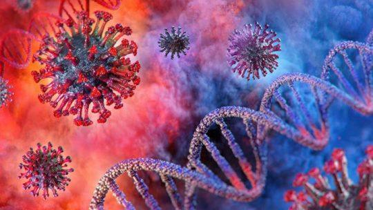Ilustrasi virus Corona atau Covid-19. Foto: Shutterstock