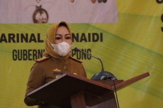 Soal Smart Village, Ini Kata Kadis PMDT Lampung