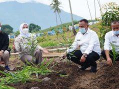 Bupati Lampung Selatan, H. Nanang Ermanto bersama Ketua TP PKK dan dinas terkait melakukan penanaman tanaman Toga di kebun edukasi. | Foto : Dokpim