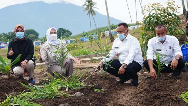 Bupati Lampung Selatan, H. Nanang Ermanto bersama Ketua TP PKK dan dinas terkait melakukan penanaman tanaman Toga di kebun edukasi.   Foto : Dokpim