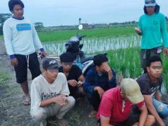 Para pelaku spesialis pencuri kabel listrik milik PLN (jongkok) saat diamankan warga Desa Sidowaluyo, Kecamatan Sidomulyo, Lampung Selatan, Kamis (14/1/2021) pagi. (foto: dok. Desa Sidowaluyo).