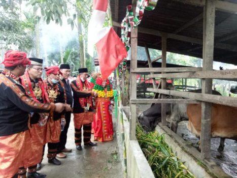 Kepala Kanwil Kemenag Provinsi Aceh, Iqbal, meluncurkan wakaf produktif penggemukan sapi, Minggu (24/01)