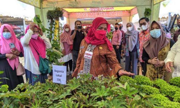 Walikota Eva Dwiana mengunjungi stand penjual bunga Rumput Papua.