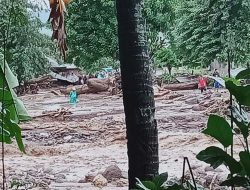 Banjir Bandang di NTT: 128 Orang Meninggal,  8.424 Warga Mengungsi
