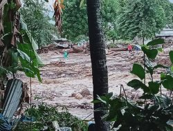 Banjir Bandang di Flores Timur, 23 Warga Meninggal Dunia