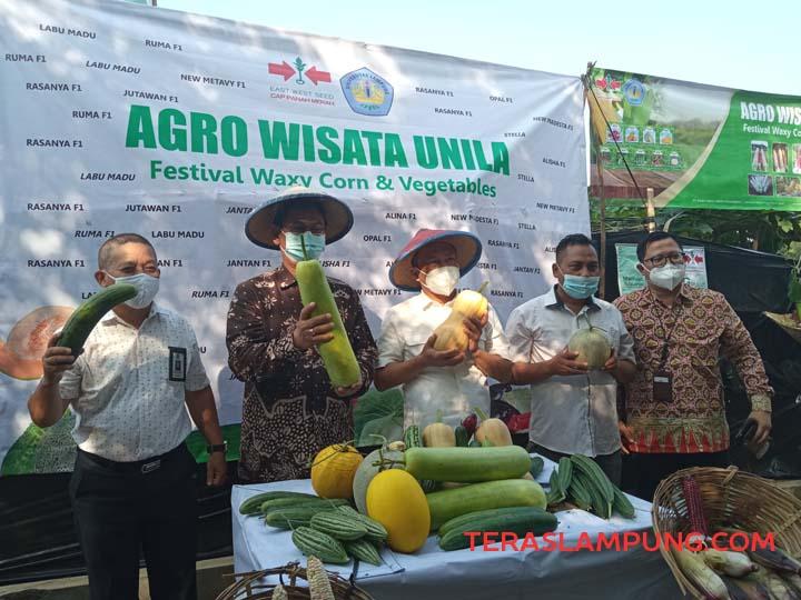 Wakil Rektor Unila Dr. Asep Sukohar dan para petinggi Unila menunjukkan hasil panen di Kebun Agro Wisata Unila, Kamis (22/4/2021).