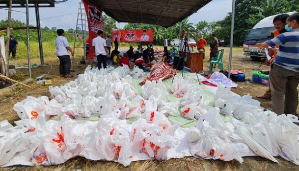 Daging kurban yang dihimpun PKS Lampung siap dibahgikan.