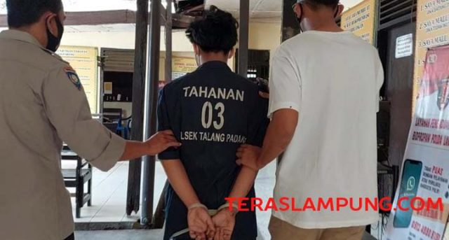 FR dibekuk petugas Polsek Talangpadang, Tanggamus, usai merampas ponsel yang sedang dimainkan seorang anak.