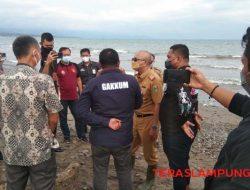 Pencemaran Pantai Pesisisir Lampung Langsung Ditangani KLHK-Mabes Polri, Ini Hasil Sementara